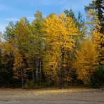 Fall pic a Stuart Lake 1